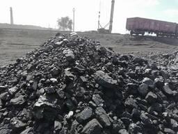 Уголь - фото 2