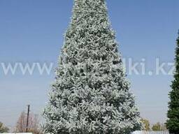 Уличная искусственная каркасная елка (хвоя-пленка) 6м