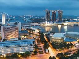 Визы Сингапур - фото 1