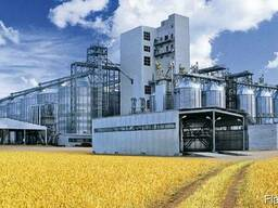 Закуп зерна, ячмина, пшеницы