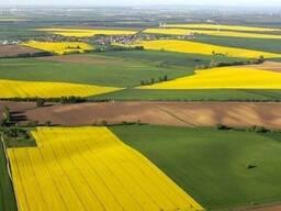 Земли сельхозназначения в Жаркаинском районе